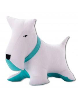 Petit dog blanc vert